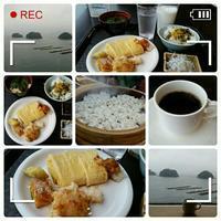 【生中継】朝ごはん食べています♪ - コグマの気持ち