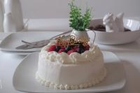 Happy Birthday。 - イトティン日記 -from Italy-