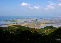 ☆ 回想㉗)横島干拓と野鳥たち=熊本県玉名市横島町 - チャレンジ! 日々の散歩道