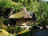 ぶらり京都一人旅その8高台寺 - 自然がいっぱい3