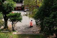 里坊の坂本と近江神宮 - 「古都」大津 湖国から
