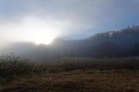 山里の霧と紅葉 - デジタルな鍛冶屋の写真歩記