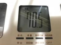 ダイエット体験記(1~31日) - 昴流のブログ
