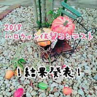 仮装コンテスト結果発表! - cache-cache~成田市ハンドメイドマーケット&オープンガーデン~