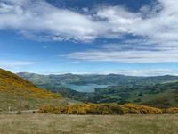 ぺジョンベイ - bluecheese in Hakuba & NZ:白馬とNZでの暮らし