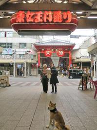 大須商店街 - yamatoのひとりごと