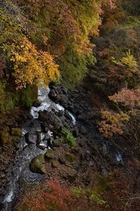 秋の撮影行① - 光画日記