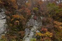 秋の撮影行③ - 光画日記