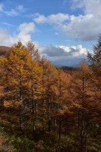 秋の撮影行⑥二度上峠から - 光画日記
