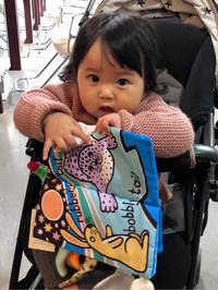 りんちゃん(10ヶ月)ご来店です - 渋谷のヘアサロンROOTSのブログ