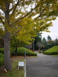難波田城公園 - ichibey日々の記録