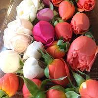 バラを見て・香って・食べて・飲んで・・体験をしてきました。。♡ - 妖精と香りの庭