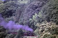 アーカイブSL山口号 - new 汽車の風景