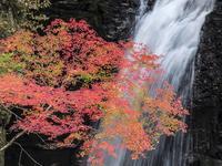 ■ 撮影会旅日記・高野山 - こだわり写真館