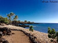 レフア邸の 特製 ブレンドオイル - Hawaiian LomiLomi ハワイのおうち 華(レフア)邸