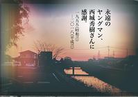 前田画楽堂本舗デザイン商品 18.11.6〜永遠のヤングマン - 前田画楽堂本舗