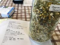 """ご参加本当にありがとうございました。 - 英国メディカルハーバリスト&アロマセラピストのブログ""""Herbal Healing 別館"""""""