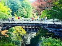 秋の猿橋ミニチュア風 - 風の香に誘われて 風景のふぉと缶