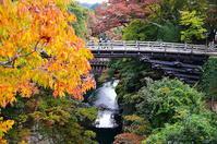 秋の猿橋錦秋 - 風の香に誘われて 風景のふぉと缶