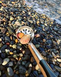 【海で拾った石】石拾い棒で石拾い - azukki的.