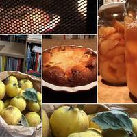 マルメロのクラフティ quince clafoutis - ムール貝