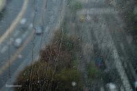 窓の外は雨。。 - Bamboobooのひとりごと