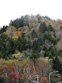 藤田八束の鉄道写真@日本の四季を堪能、日本の四季と健康・・・人間は必要な生物、そして自分の存在価値はあるのか、列車が走る素敵な秋 - 藤田八束の日記