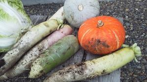 いただき物……野菜、蜂蜜 -
