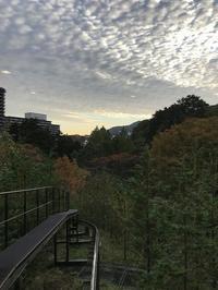 旅のキロク2017年@界鬼怒川 - ヒビノコト。
