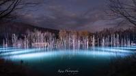 青い池ライトアップ - Photo 森の声