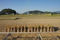 明日香村奥山:01 - ぶらり記録:2 奈良・大阪・・・