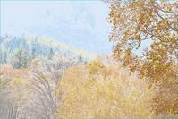 妙高高原 笹ヶ峰牧場の紅葉 1 - 光 塗人 の デジタル フォト グラフィック アート (DIGITAL PHOTOGRAPHIC ARTWORKS)