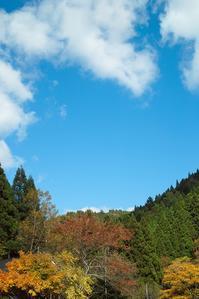 長崎くんちの花御礼・・・周囲の紅葉も秋本番! - 朽木小川より 「itiのデジカメ日記」 高島市の奥山・針畑からフォトエッセイ