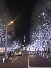 グランドフードホール六本木と東京タワー - 猫と、旅する猫用カメラ