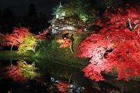 弘前城菊と紅葉まつりライトアップ_2018.11.06 - 弘前感交劇場
