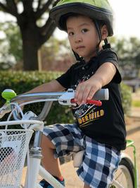 sakuと自転車 - みすみたてあきのブログ