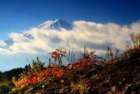 30年10月の富士(19)奥河口湖からの富士 - 富士への散歩道 ~撮影記~