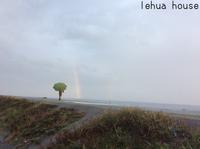キャベツ畑の虹の彼方に!   2018 秋  湖西市 - Hawaiian LomiLomi ハワイのおうち 華(レフア)邸