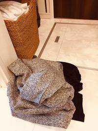 洗濯物は洗濯カゴへ - たにみち日記*平凡すぎる日々のこと*