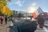 黄金に輝く秋色のパリ - パリときどきバブー  from Paris France