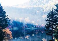 四季折々の山の恵みに感謝して - 山谷彷徨