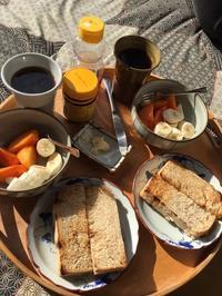 下田キャンプ⑥朝食は縁側で。トーストにはベジマイト - ミニチュアブルテリア ダージと一緒3