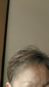 トリミング&カット - 【愛と怒涛のけいこ飯】  夫はナニジン?  不思議の国の新・国際結婚