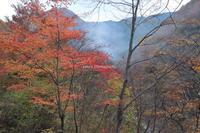 弥山川の秋は美しく - ratoの山歩き