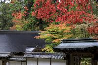 2018紅葉!~比叡山浄土院~ - Prado Photography!
