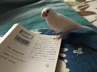 遊んでます♪ - つれづれ日記