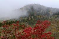 landscape 055 - LUZ e SOMBRA