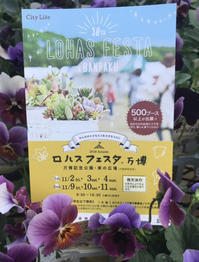 ロハスフェスタ万博、開催中!! - ブレスガーデン Breath Garden 大阪・泉南のお花屋さんです。バルーンもはじめました。