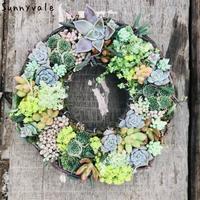 11月多肉植物のリース作り - さにべるスタッフblog     -Sunny Day's Garden-