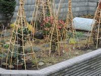 冬囲い - 小さなお庭のある家(パート2)